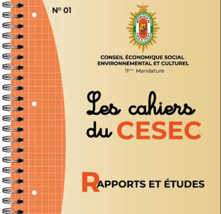 Les-Cahiers-du-CESEC-2019-final-1.png